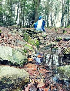 La Fontaine de Barenton - Merlin y rencontra la fée Viviane